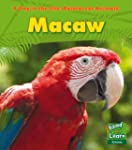 Macaw (A Day in the Life: Rainforest...