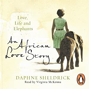 An African Love Story Audiobook