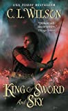 King of Sword and Sky (Tairen Soul)