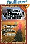 100 trucs sur Minecraft que vous ne s...