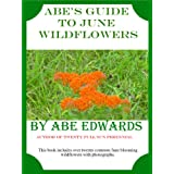 Abe's Guide to June Wildflowers (A Year of Indiana Wildflowers Book 3)