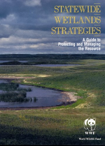 statewide-wetlands-strategies