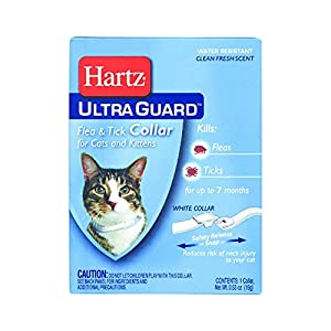 Hartz Mountain 80483 Ultraguard Flea and Tick Collar for Cats and Kittens