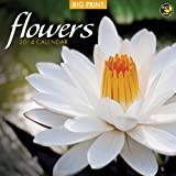 2014 Flowers (BIG PRINT) Wall Calendar