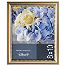 Burnes of Boston 1882L4 Picture Frame, 8-Inch by 10-Inch, Silver/Gold