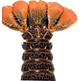 Lobster Gram B8T6 Six 8 oz. Brazilian Lobster Tails- Warm Water by Lobster Gram