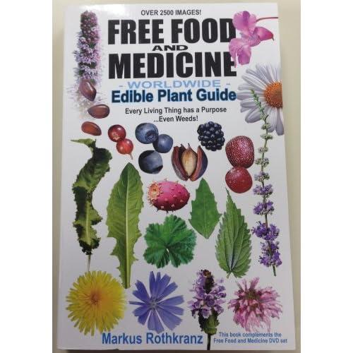 Herbal Medicine Used for Healing Purposes Predates Human History