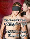img - for Feeling No Pain (Blackwater Falls Book 4) book / textbook / text book