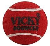 Vicky Rubber Tennis Ball, Medium (Red)