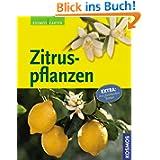 Zitruspflanzen: Extra: mit frostharten Sorten