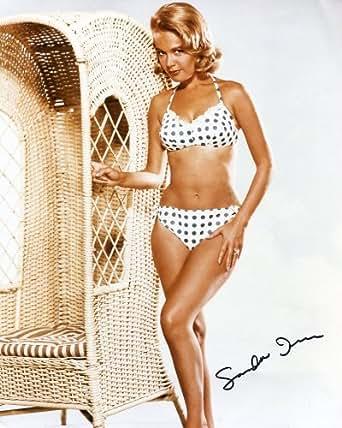 SANDRA DEE * sexy bikini signed 8x10 photo / UACC RD # 212 at Amazon