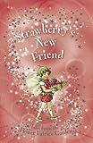 Strawberry's New Friend (Flower Fairies Secret Stories)