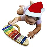 Glockenspiel (Xylophone), a Beautiful Musical Instrument for Children, perfect for any age, made of Wood with a bright pleasing tone and comes with a luxurious velvet storage pouch