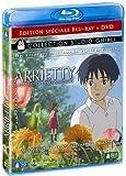 echange, troc Arrietty, le petit monde des chapardeurs - Combo Blu-ray + DVD [Blu-ray]