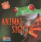 Animal Sight