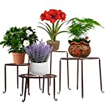 tabouret plante d 39 occasion 74 vendre pas cher. Black Bedroom Furniture Sets. Home Design Ideas