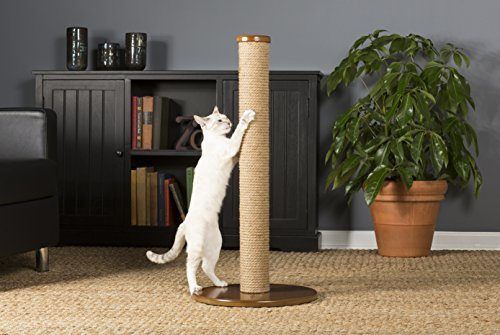 Prevue Pet Products Kitty Power Paws Tall Round Post, Natural