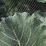 Soft Butterfly Protection Netting 4m x 5m
