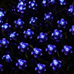 Innoo Tech**50 LED Solar Decorative F...