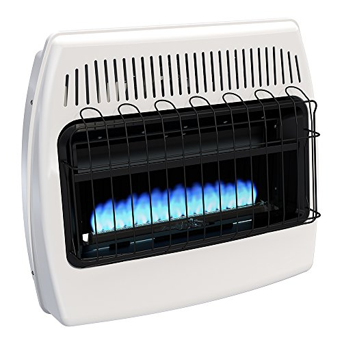 Dyna-Glo BF30PMDG 30,000 BTU Liquid Propane Blue Flame Vent Free Wall Heater (Ready Heat Propane Heater compare prices)