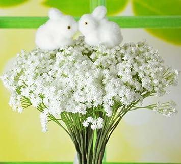 Amazon.com: Baby Breath/gypsophila Wedding Decoration Flower White ...