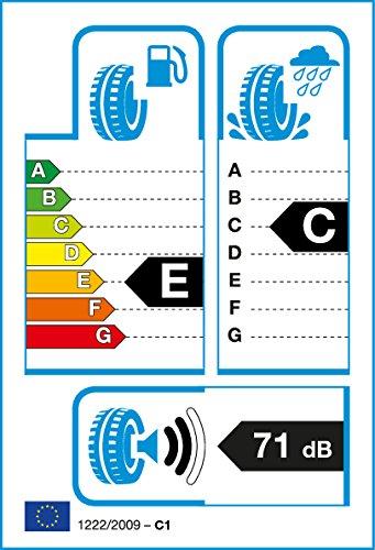 Pneumatici-gomme-auto-estive-Fortuna-F2000-20555-R16-91-V-efficienza-energetica-E-aderenza-sul-bagnato-E-indice-di-rumorosit-2-71-dB
