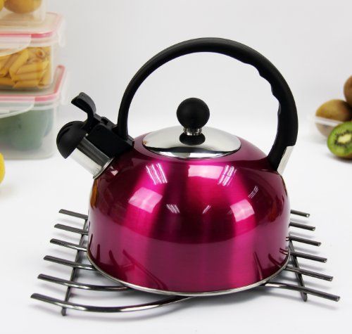 Stainless Steel Tea Kettle - Hot Pink