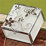 StealStreet SS-A-38104 Butterfly Decoration Jewelry Box, Amber
