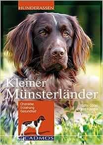 Kleiner Münsterländer: Petra Klemba Gaby Goebel: 9783840428067