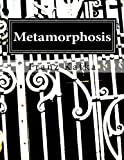 Image of Metamorphosis