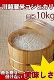 埼玉県産 白米 コシヒカリ 10kg (5kg×2) 川越蔵米 (未検査米) 平成28年産