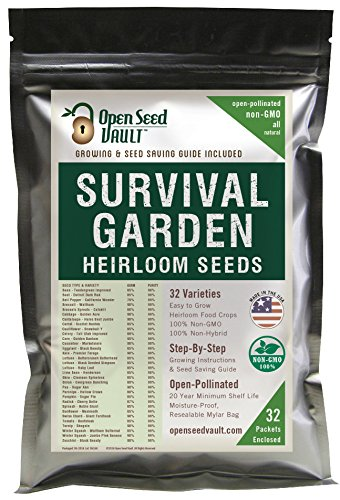 15,000 Seed 32 Vegetable Fruit Variety Garden Pack Emergency Survival Kit Mre ... (Purple Fruit Seeds compare prices)