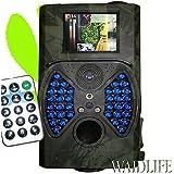 WaidLife Wildkamera!! WILDBAYER BASIC Neuheit mit Fernbedienung und 36 unsichtbaren LEDs