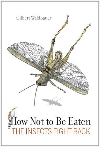 How Not to Be Eaten: The Insects Fight Back by Gilbert Waldbauer (2012-02-13)