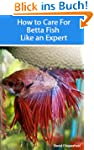 How to Care for Betta Fish Like an Ex...