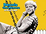 Dennis the Menace: Never Say Dye