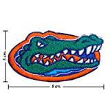 Florida Gators Style-1 Embroidered Iron On Patch at Amazon.com