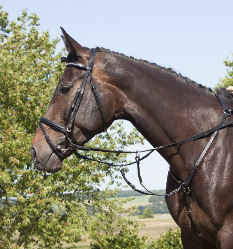 usg-elastic-hunting-breast-plate-with-martingale-fork-silver-fittings-saddlepart-with-snapples-full