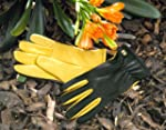 Gold Leaf Dry Touch Gloves - Gents