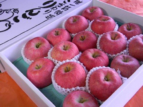★これからのリンゴです!青森産「有袋ふじりんご」14~16個5キロ箱