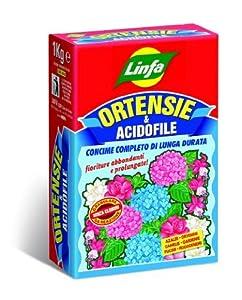 Concime ortensie e acidofile linfa giardino e for Concime per ortensie