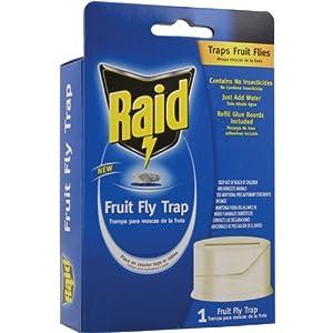 Raid FFTRAID Fruit Fly Trap (Pack of 6) by Raid