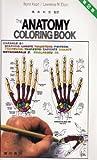 カラースケッチ解剖学