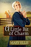 A Little Bit of Charm: 3 (The New Beginnings Series)