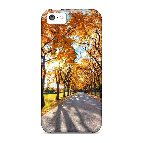 Defender Case For Iphone 5C, Road Autumn Park Trees Landscape Pattern