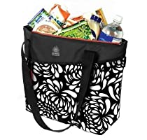 California Innovations High Performance Thermal Tote Keeps Ice for 2 Days