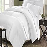 Kathy Ireland Home Essentials Microfiber Down Comforter, White, Full/Queen