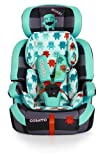 Cosatto Zoomi Group 1/2/3 Car Seat 2014 Range (Cuddle Monster)