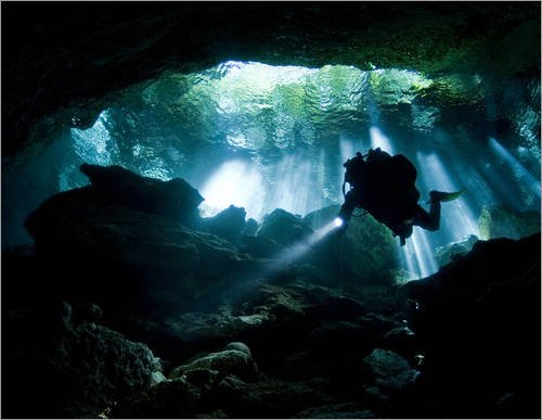 poster-80-x-60-cm-cenote-diver-enters-taj-mahal-cavern-on-yucatan-peninsula-in-mexico-by-karen-doody