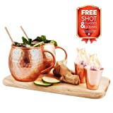 Abhiasa Moscow Mule Copper Mugs Set - 2 Mugs (16 Oz) + 2 Shot Glasses (2 Oz) + 2 Straws (6,5 in) - All components made of 100% Solid Copper - Perfect for Cocktails and Cold Drinks